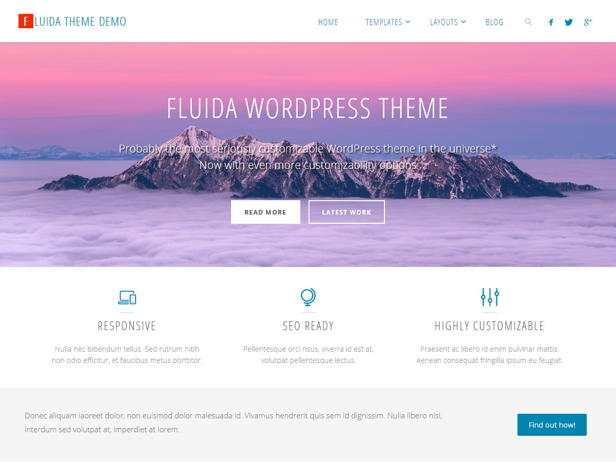 Fluida Plus WordPress Theme