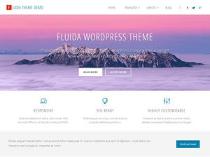 fluida-wordpress-theme-tiny