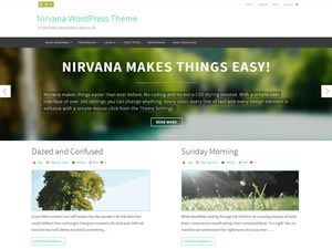 nirvana-wordpress-theme-tiny