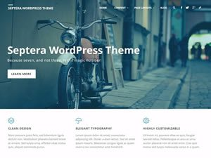 septera-wordpress-theme-tiny