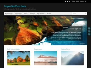 tempera-wordpress-theme-tiny