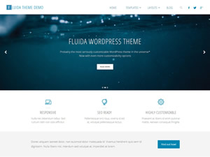fluida-wordpress-theme-tiny-153